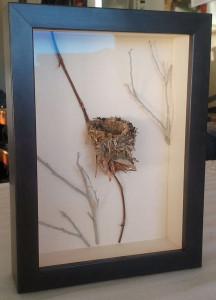nest_custom_frame